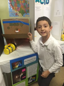 Science Fair at School